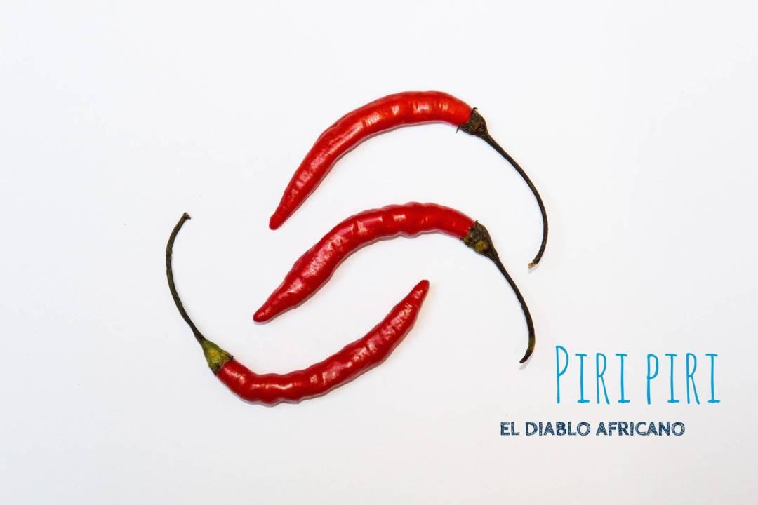 Panrotas-Picante-PiriPiri
