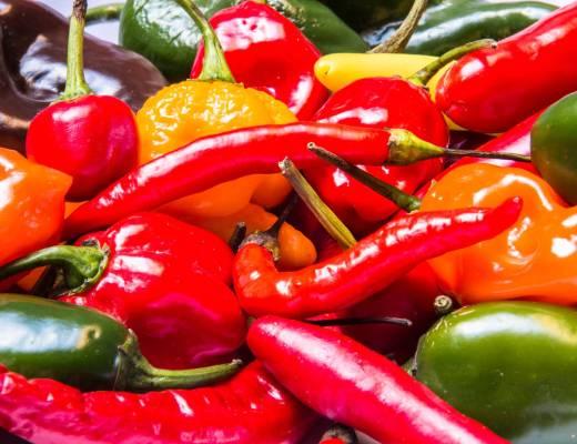 Imagens de muitas pimentas juntas , de todos os tipos. Todas amontoadas.