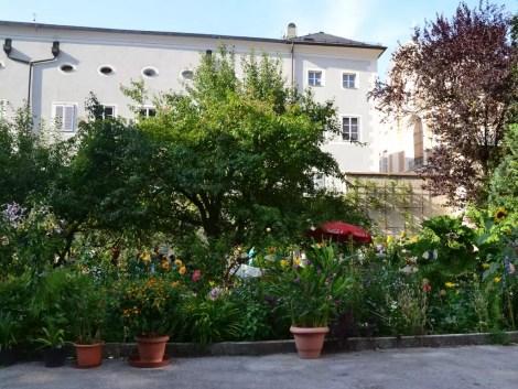 Klostergarten Franziskaner (2)