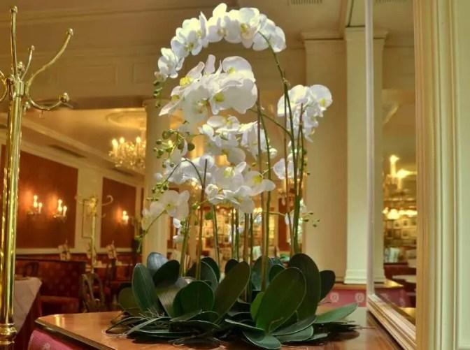 Blumen Café Sacher