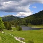 Der Seewaldsee; Idylle im Salzburger Tennengau