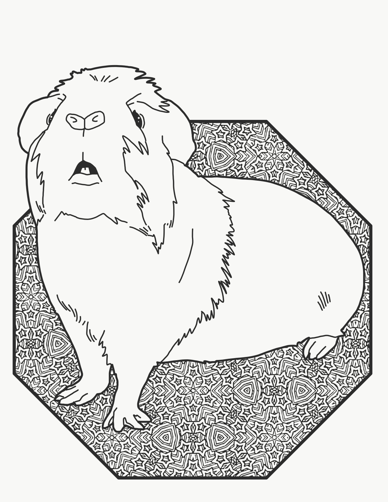 Wondering Guinea Pig Downloadable Coloring Page