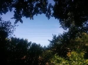 San Claudio immagine del Cielo di Via Trevi