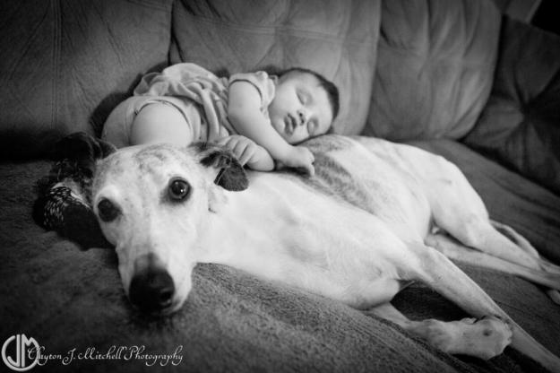 dog_and_baby_photo