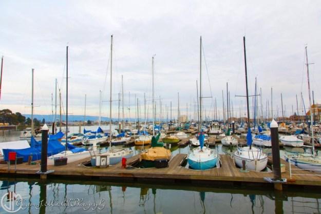 boats at Alameda marina