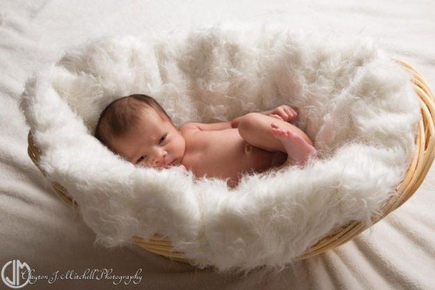 newborn photography Alameda CA