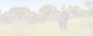 Businessman wearing sunglasses in a field