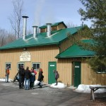Fortune Farms Maple Sugar Bush – 2011