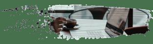 Ilitia-Accounting