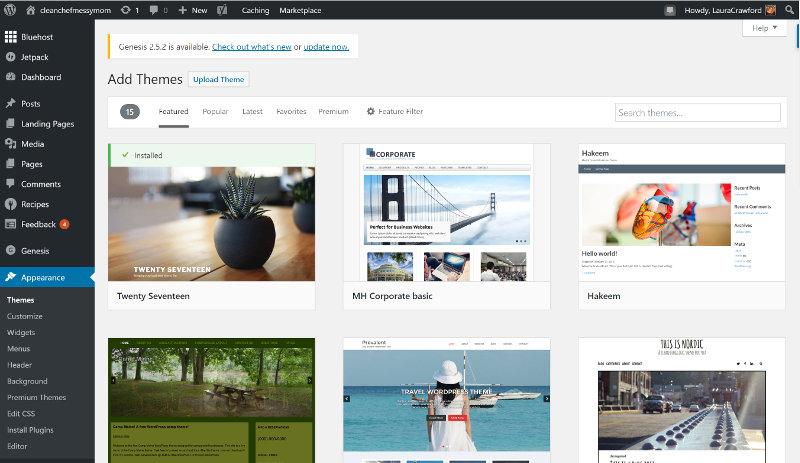 Wordpress Theme Search Engine