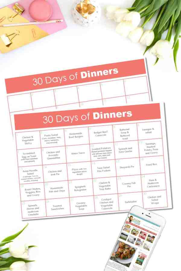 Welcome to DAY 5 of the 21 Day Free Printables Series!I've a feeling you are going to love me for this 30 Days of Dinners Planner. One Page with a month of Dinner ideas all in one place.