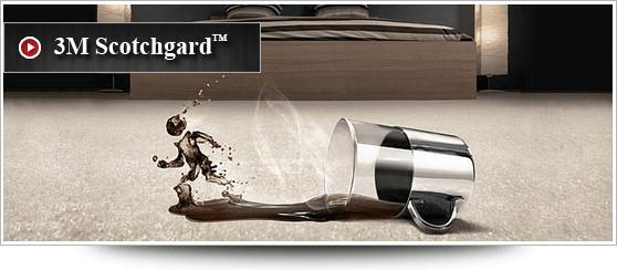 3m Scotchgard Rug Protection