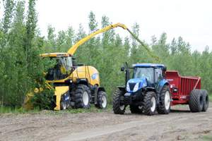 cellulosic ethanol,ZeaChem,alternative fuels