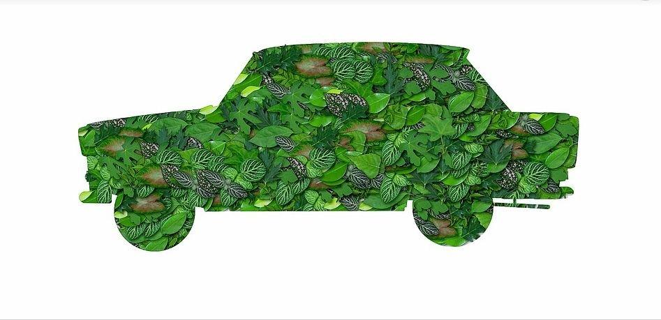 Environmental impact of cars