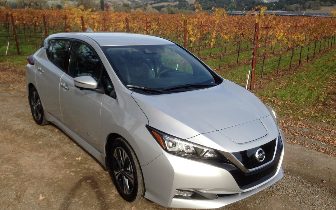 Flash Drive: 2018 Nissan Leaf