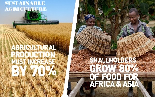 sustainable-agriculture-by-unilever-9-638