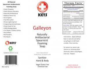 8453814-Galleyon-Foamer