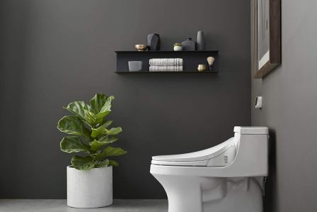 Top 10 Best Small Toilets In 2020 Ultimate Guide