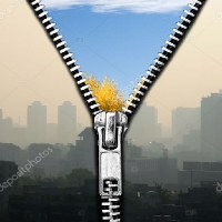 Portal for regulation of air pollution launched