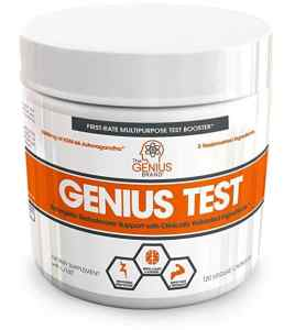 Genius-Test