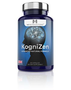 Kognizen review