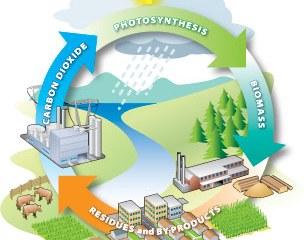 Bioenergy-Projects