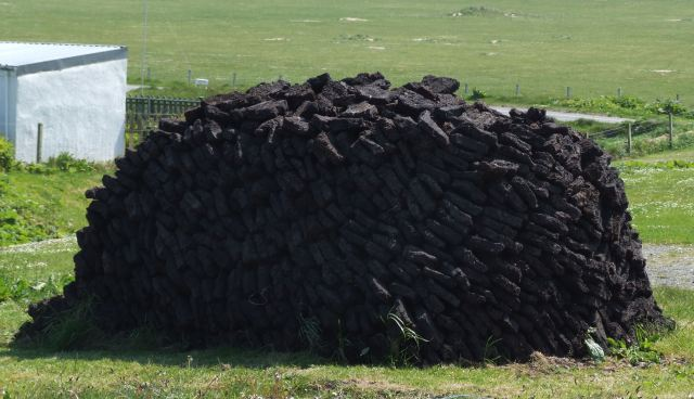 peat-biomass
