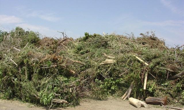 organic mulches