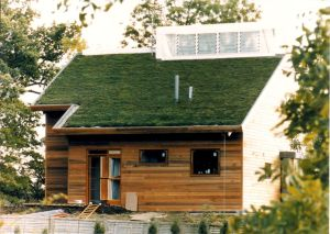 green-roofs-benefits