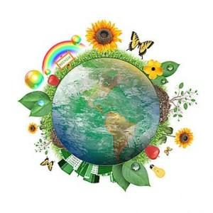 environment-education