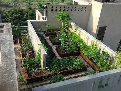 Marvelous Rooftop Gardens, Also Known As Green Roofs, Are Vegetative Green Layer  Grown On A Rooftop Of Buildings Providing Greenery, Useful Products, Shade,  ...