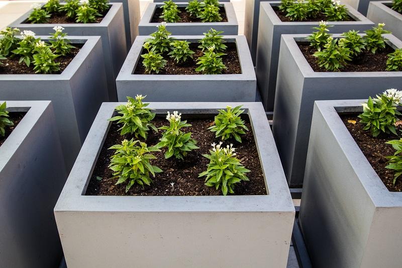 6 Top Reasons To Use Modern Planter Boxes To Enjoy Gardening