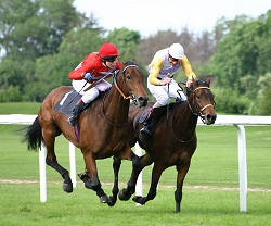 horse-racing-misconceptions