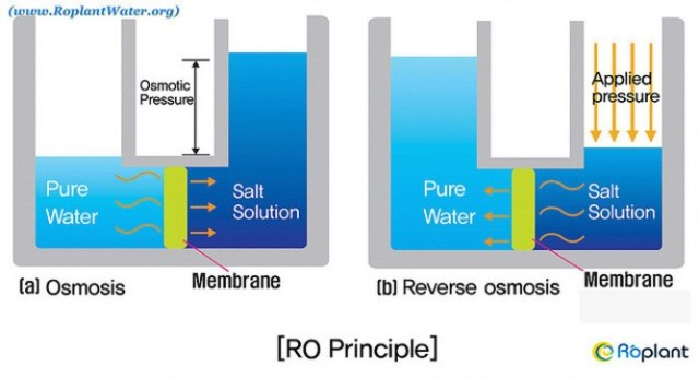reverse-osmosis-principle
