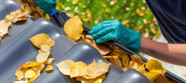 roof-maintenance