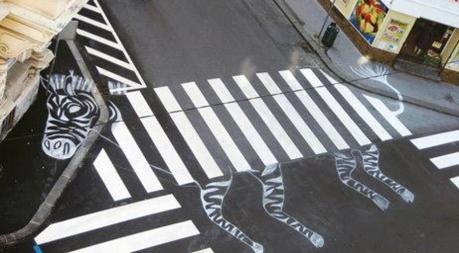 Zebra zebrapad