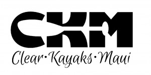 CKM Logo-black on white