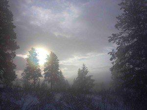 Misty Winter Scene at Clear Sky Meditation Center