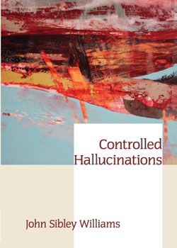 Controlled-Hallucinations