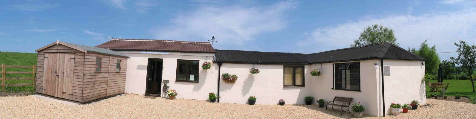 Cleeve Cats Cattery in Wiltshire near Melksham