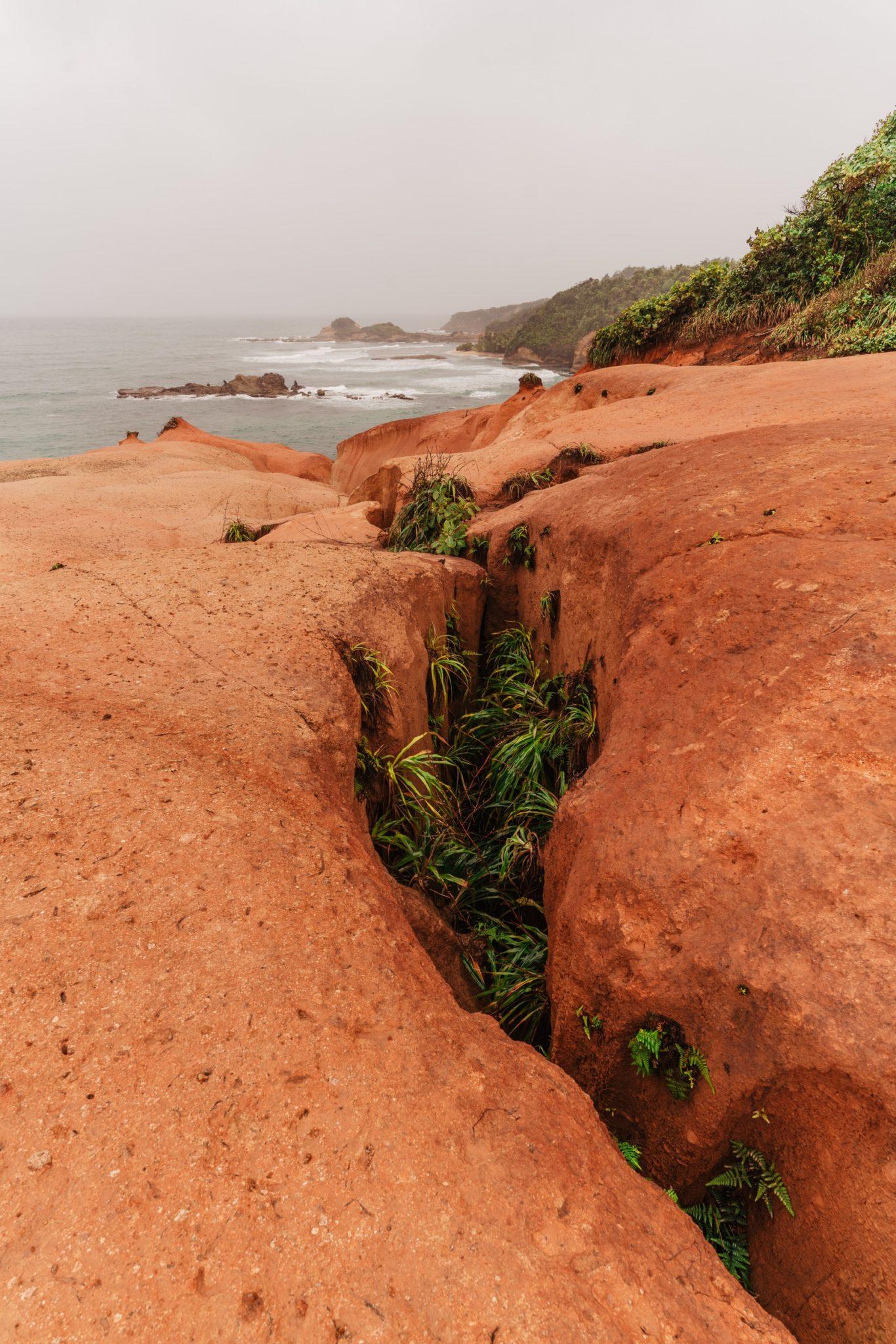 Red Rocks, Dominique