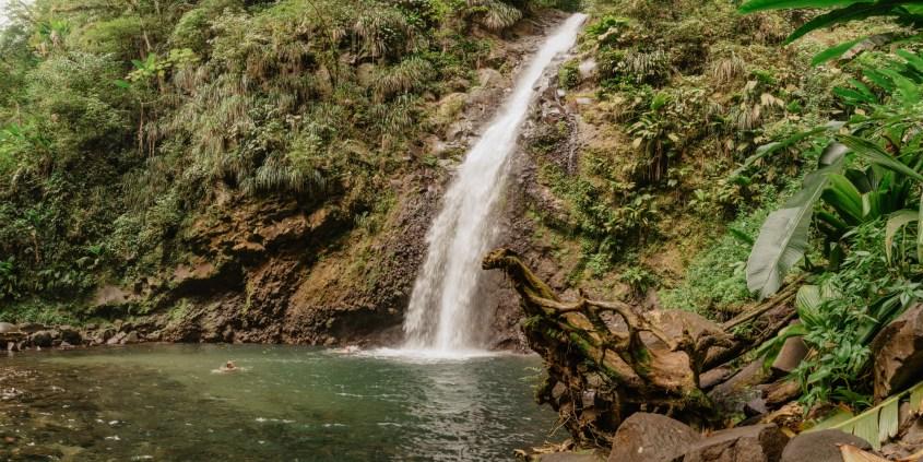 Cascade Didier, Martinique