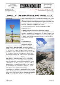 thumbnail of W LISTA MARIA La Majella 2