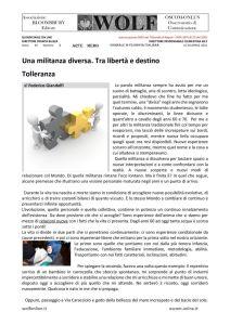 thumbnail of GF GIANDOLFI militanza