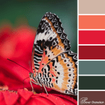 Butterfly Loves Red color scheme from Clever Chameleon