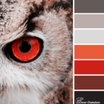 Red-Eye Flight color scheme from Clever Chameleon