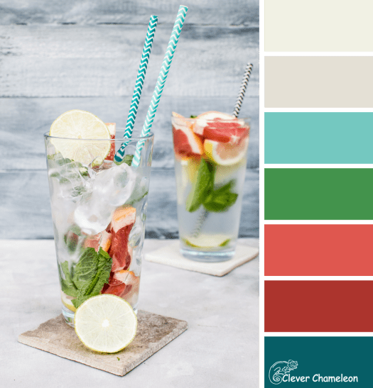Blood Orange and Mint color scheme from Clever Chameleon