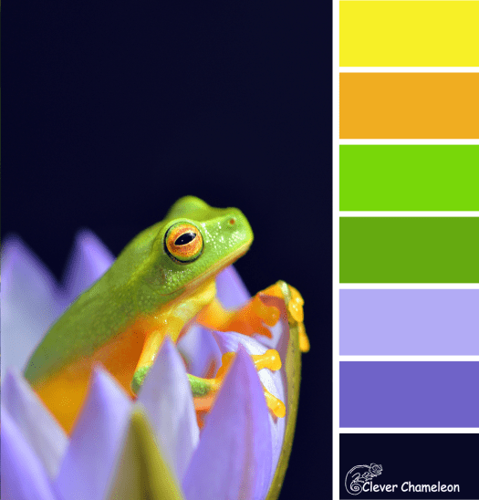 Why sit on a Lily Pad? colour scheme from Clever Chameleon