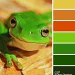 Hoppy Tuesday colour scheme from Clever Chameleon