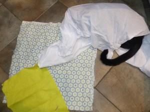 cat helping choose fabrics